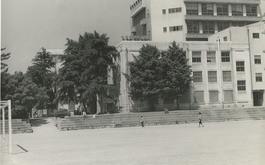 グランドから校舎を望む。後ろは旧2号館